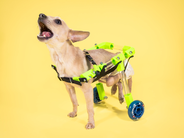 FiGO Dog Wheelchair