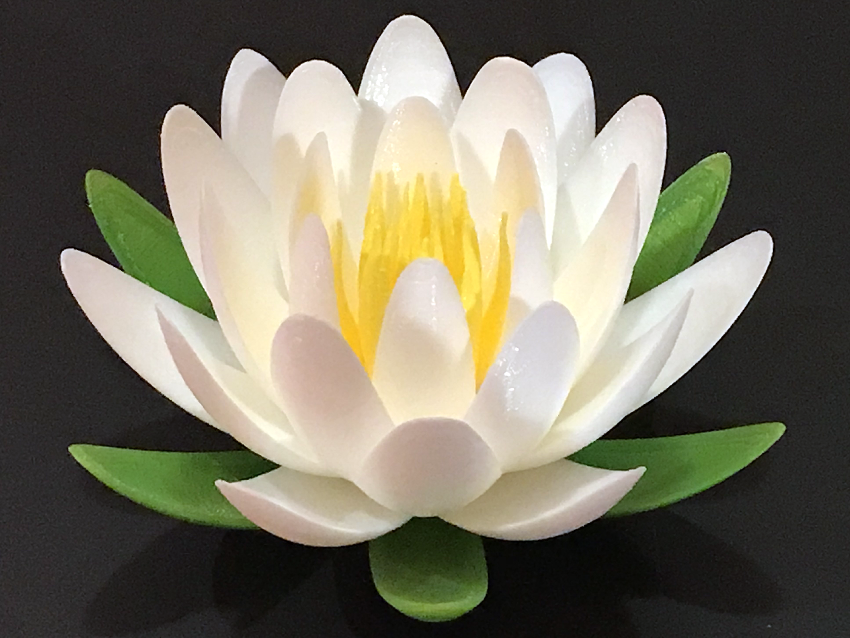 Water Lily Or Lotus Flower By Shepler007 Thingiverse