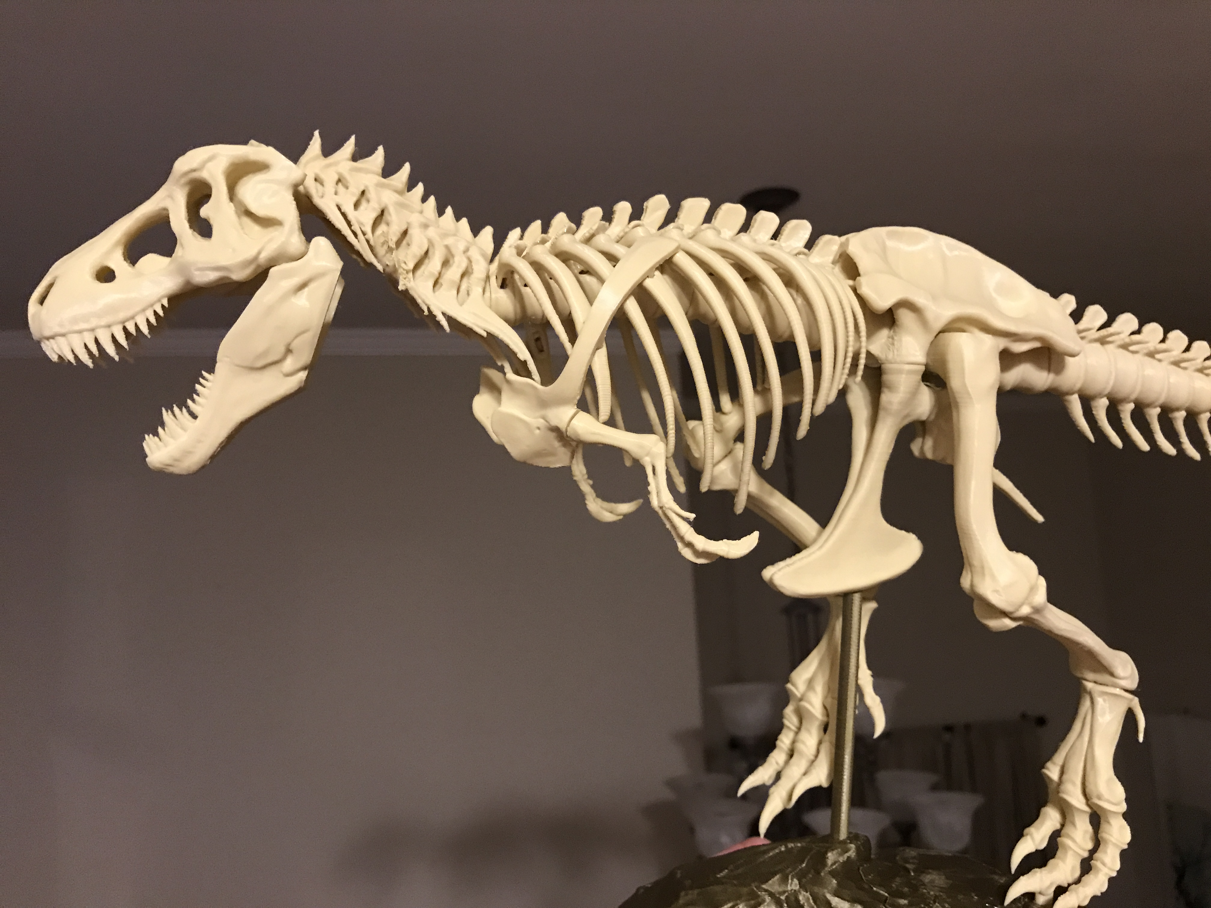 T-Rex Skeleton fixed and printable by icefox1983 - Thingiverse
