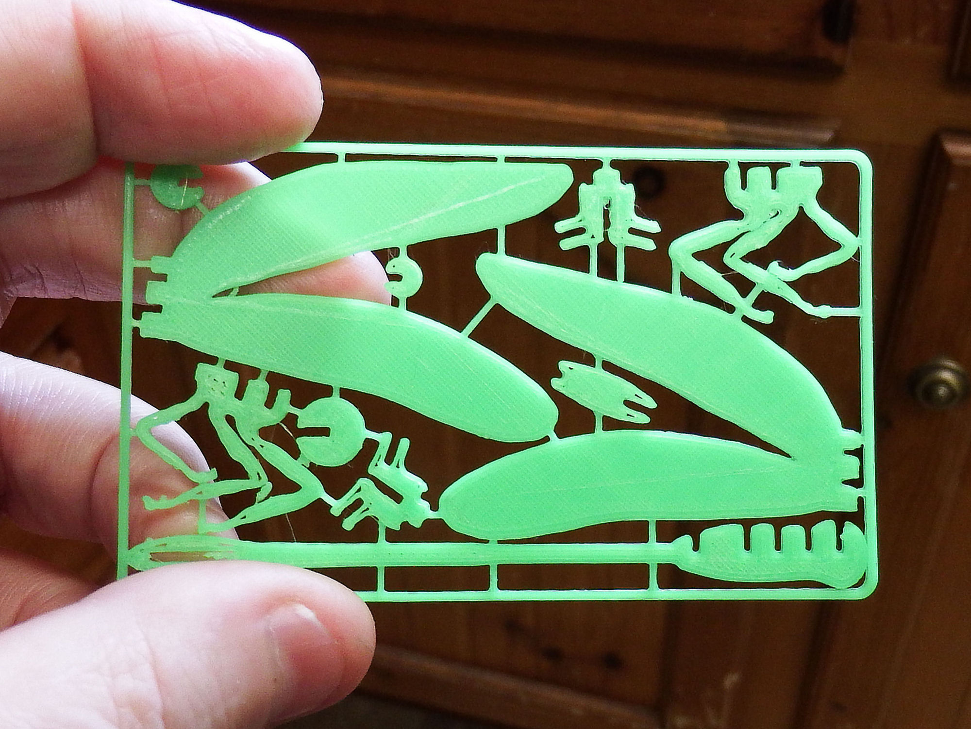 Dragonfly Business Card by chuckbobuck - Thingiverse