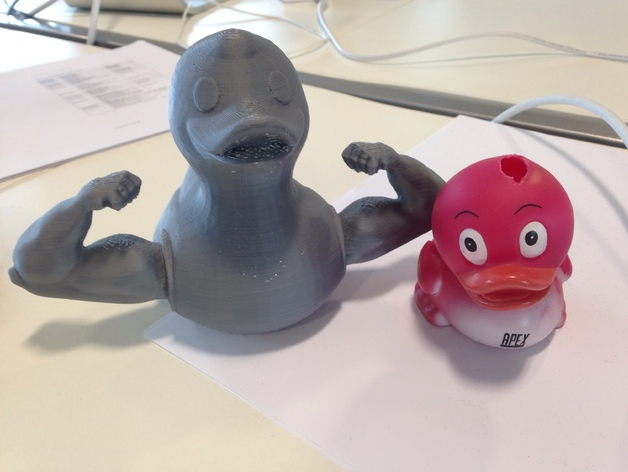 Muscle Duck By Epicopk Thingiverse