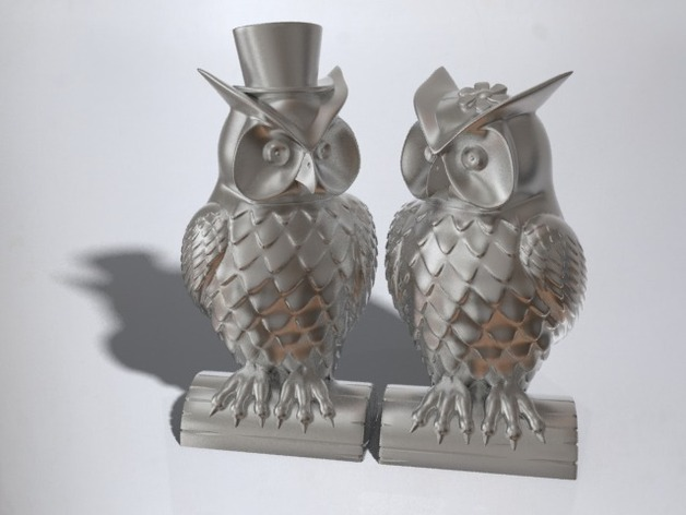 His and Her Owls